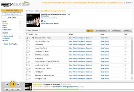 Amazon Cloud Player in Windows RT IE10